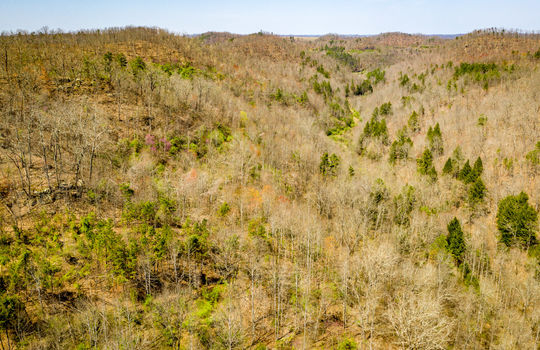 Mountain Property Cheap Land for Sale-089