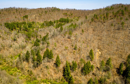 Mountain Property Cheap Land for Sale-104
