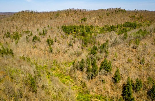 Mountain Property Cheap Land for Sale-108