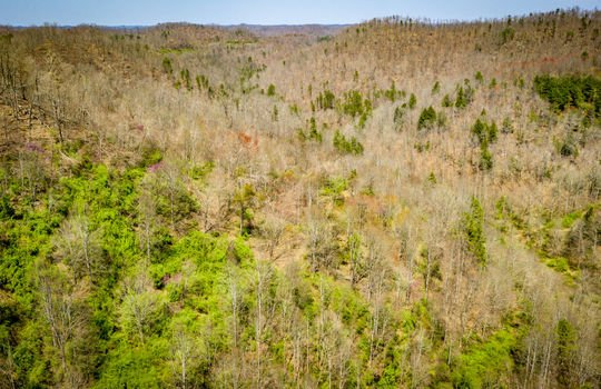 Mountain Property Cheap Land for Sale-114