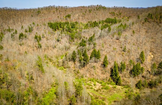 Mountain Property Cheap Land for Sale-116