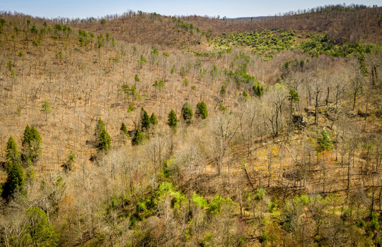 Mountain Property Cheap Land for Sale-118