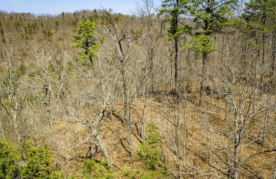 Mountain Property Cheap Land for Sale-135