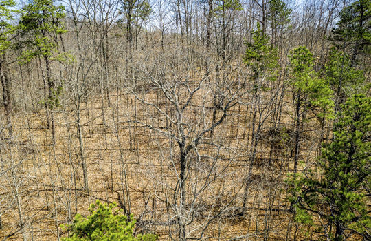 Mountain Property Cheap Land for Sale-138