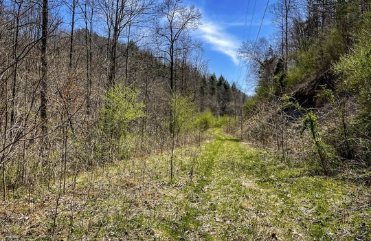 Mountain Property Cheap Land for Sale-148