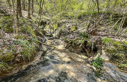 Mountain Property Cheap Land for Sale-150