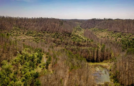 Mountain Property Cheap Land for Sale-166
