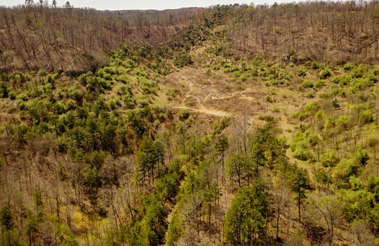 Mountain Property Cheap Land for Sale-168