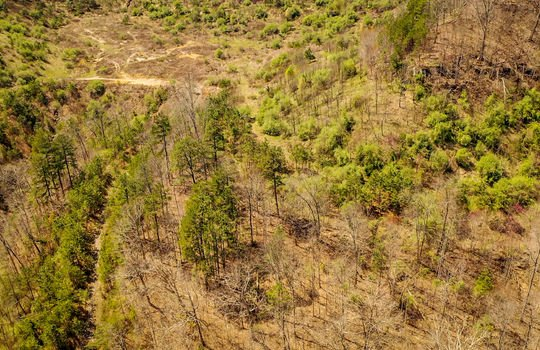 Mountain Property Cheap Land for Sale-169