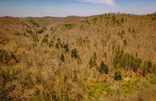 Mountain Property Cheap Land for Sale-172