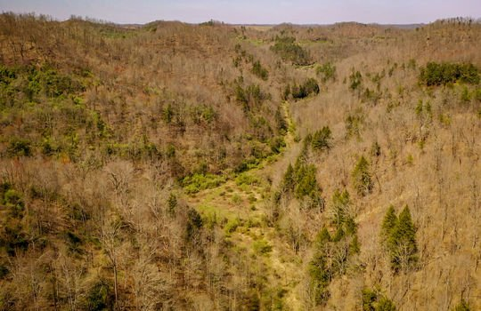 Mountain Property Cheap Land for Sale-175