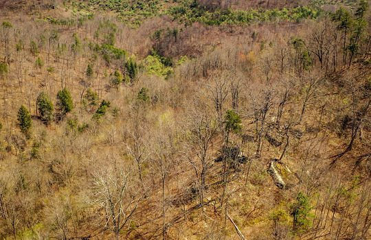 Mountain Property Cheap Land for Sale-183