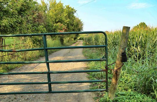 Kentucky-Farm-Land-For-Sale-Drs01