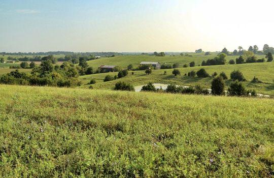 Kentucky-Farm-Land-For-Sale-Drs05