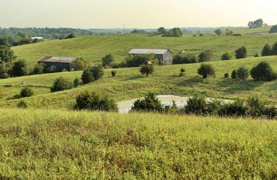 Kentucky-Farm-Land-For-Sale-Drs06