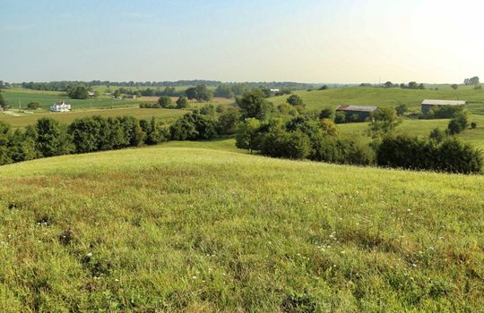 Kentucky-Farm-Land-For-Sale-Drs08