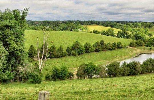 Perryville-Kentucky-Farm-For-Sale-DrFork14