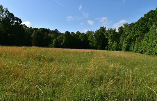 3005 Maple Way Drive Site 4