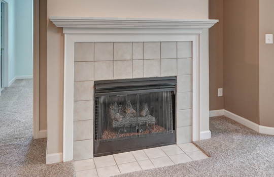 921 Northeast Dr 26 fireplace