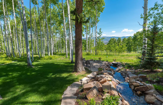 491-Forest-Trail-Website-and-MLS-Malia-Edited-0011
