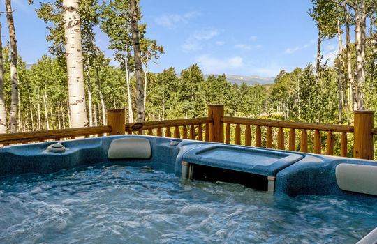 732-Forest-Trail-012-026-Hot-Tub-MLS-Size