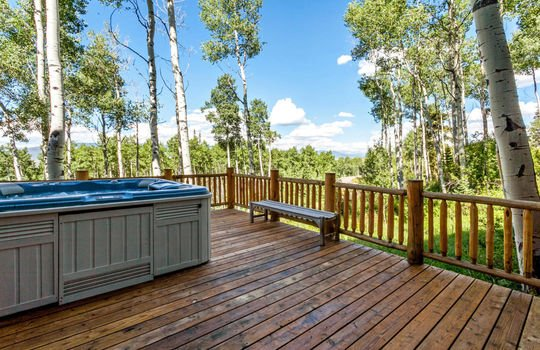 732-Forest-Trail-028-025-Deck-MLS-Size