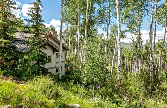 732-Forest-Trail-030-031-Exterior-MLS-Size
