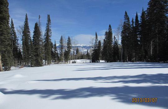 722 Granite Springs 64