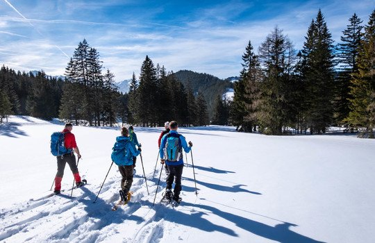 Adults snowshoeing thruogh forest in Kaiserau with mountain Rottenmanner Tauern