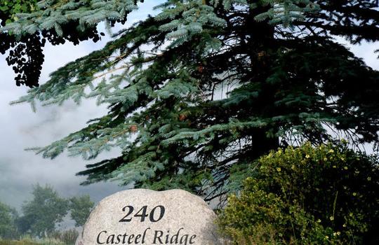 240 Casteel Ridge 78