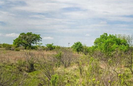 Lometa 252 Acre Ranch 1 (101)