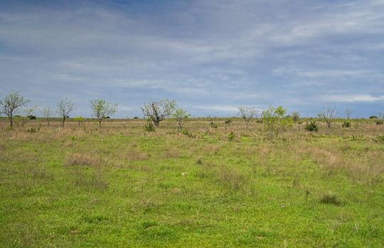 Lometa 252 Acre Ranch 1 (107)