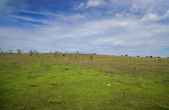 Lometa 252 Acre Ranch 1 (108)