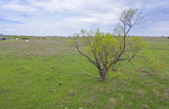 Lometa 252 Acre Ranch 1 (11)