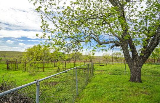 Lometa 252 Acre Ranch 1 (53)