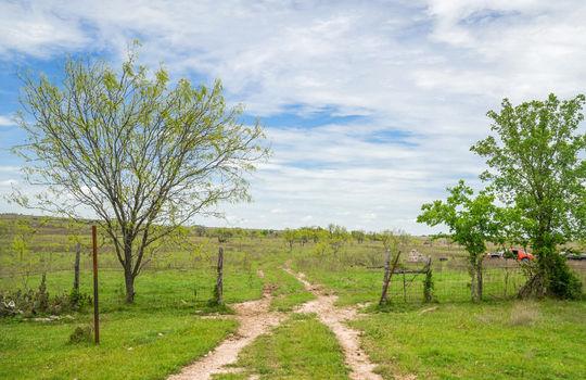 Lometa 252 Acre Ranch 1 (59)