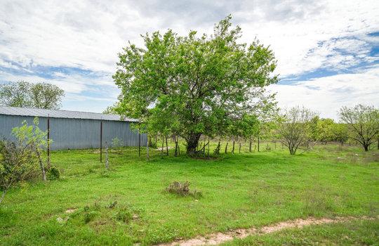 Lometa 252 Acre Ranch 1 (61)