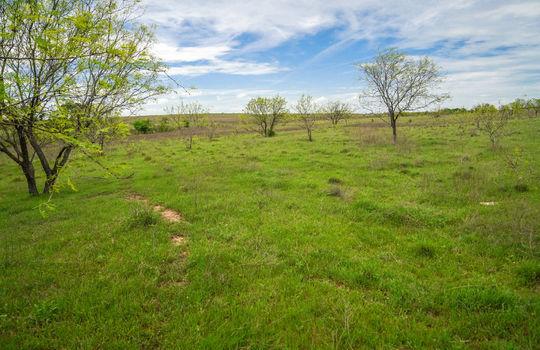 Lometa 252 Acre Ranch 1 (62)