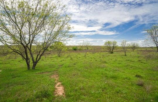 Lometa 252 Acre Ranch 1 (63)