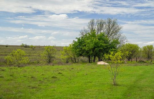 Lometa 252 Acre Ranch 1 (83)