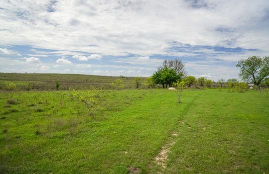 Lometa 252 Acre Ranch 1 (84)