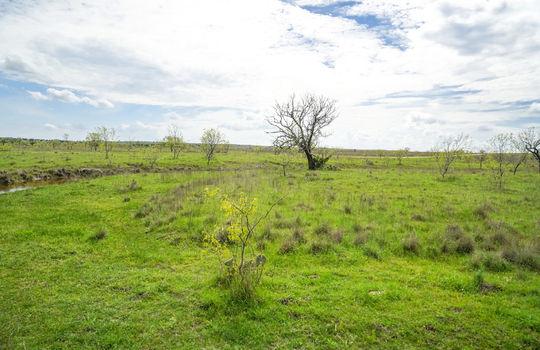 Lometa 252 Acre Ranch 1 (87)