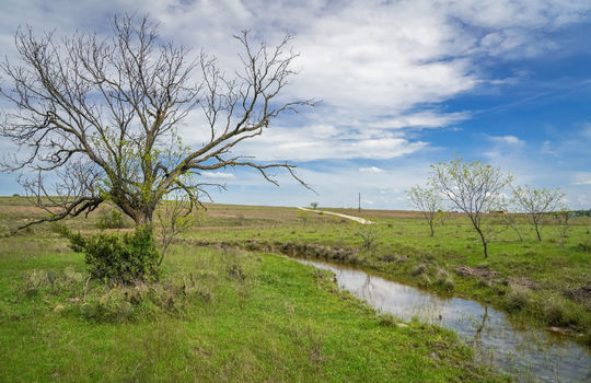 Lometa 252 Acre Ranch 1 (92)