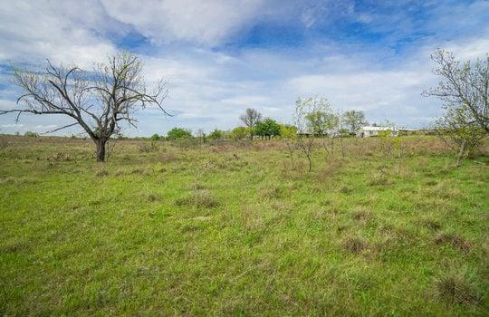 Lometa 252 Acre Ranch 1 (96)
