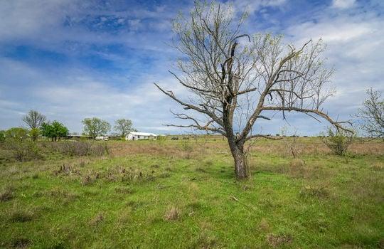 Lometa 252 Acre Ranch 1 (98)