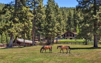 Dreamy Northern Nevada Ranches and Land for Sale Right Now