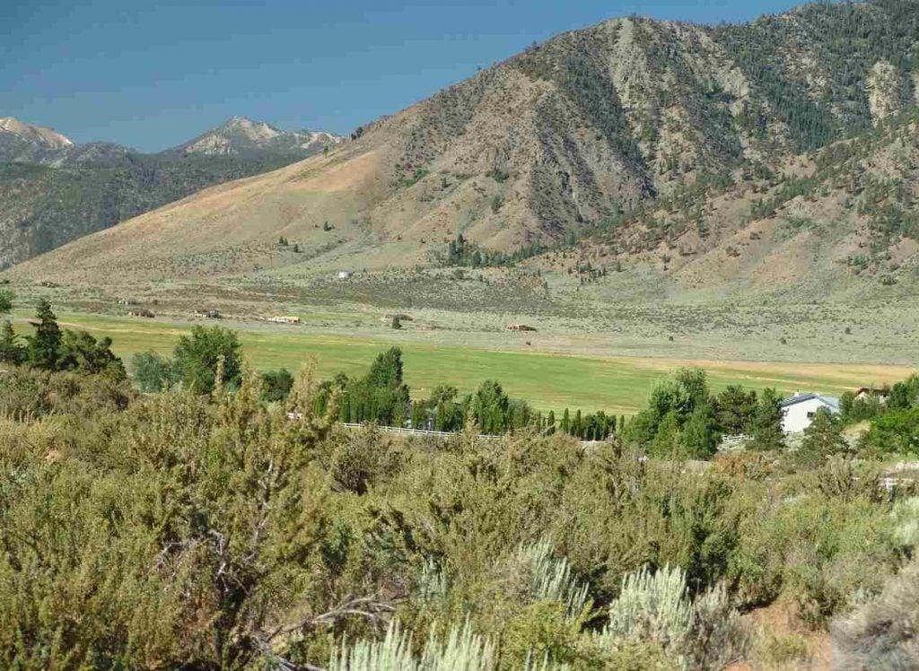 3447 Jacks Valley Genoa Carson City Nevada Land for Sale Chase International