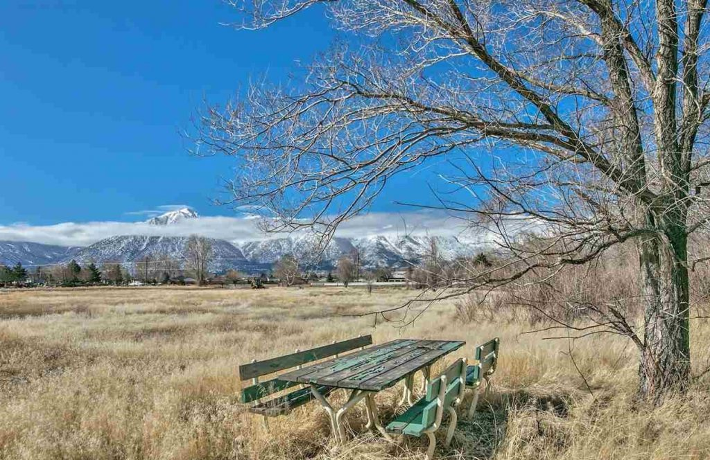 1391 Centerville, Gardnerville Nevada Land for Sale Chase International
