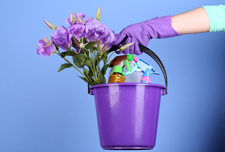 Spring Cleaning Tips for Summer Sellers