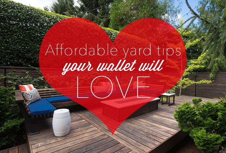 4 Ways to Give Your Yard More Love, At A Great Price